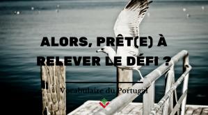 vocabulaireduportugal-parler-portugais-europeen-8