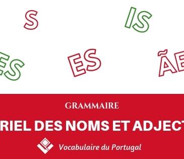 Le pluriel des noms et adjectifs en portugais
